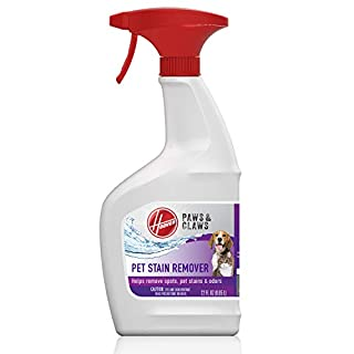 Hoover Paws & Claws Spot and Stain Remover, 22oz Pet Pretreat Spray Formula for Carpet and Upholstery, AH30901, White