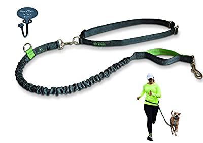 #1 Running Dog Leash, Hands Free Dog Leash, Mighty Paw Bungee Is Lightweight with Reflective Stitching