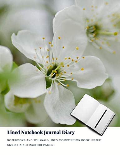 Lined Notebook Journal Diary: Notebooks And Journals Lines Composition Book Letter sized 8.5 x 11 Inch 100 Pages (Volume -