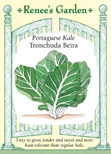 Portuguese Air - Portuguese Heirloom Kale Tronchuda Beira Seeds