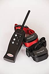 Dogwidgets® 2 Dog Training Shock Collar With Remote Rechargeable Electronic E-Collar Safe Pet with Individual Vibrate For Each Dog For Small, Medium and Large Trainer Obedience Collar