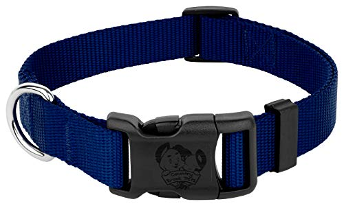 Country Brook Petz - 25+ Vibrant Colors - American Made Deluxe Nylon Dog Collar with Buckle (Extra Large, 1 Inch Wide, Royal Blue)