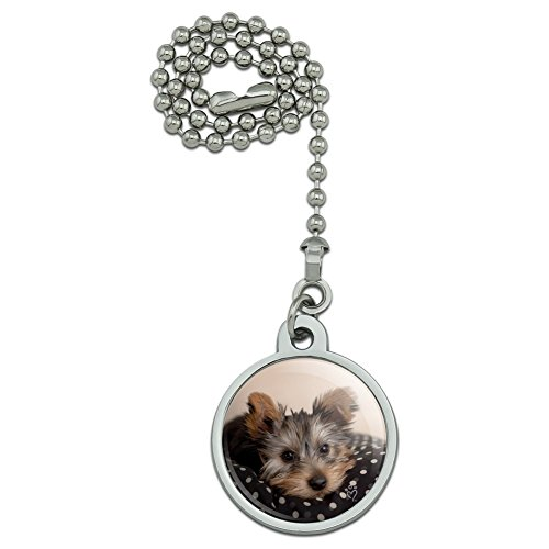 Graphics and More Yorkie Yorshire Terrier Puppy Dog on a Spotted Cushion Ceiling Fan and Light Pull Chain