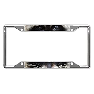 License Plate Covers Raccoon Animal Eyes Chrome Metal License Plate Frame Tag Holder Four Holes