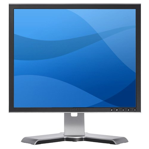 Dell Ultrasharp 1907FP Panel Monitor