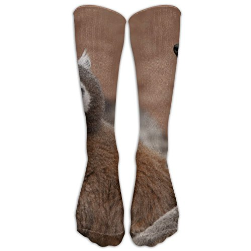 Brown Lemurs Zoo Unisex Compression Socks Sports 3D Printed Stocking Running&Fitness Thich-high Long Length (Brown Lemur)