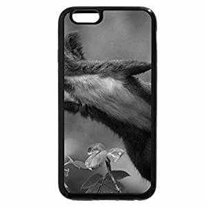 iPhone 6S Case, iPhone 6 Case (Black & White) - Come Fly With Me.