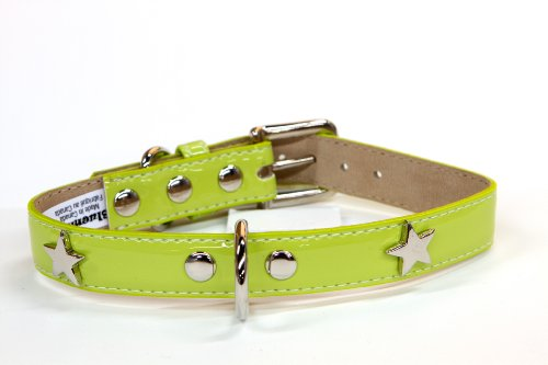 - Bluemax Italian Synthetic Patent Dog Collar with Star Stud, 3/4-Inch by 14-Inch, Lime