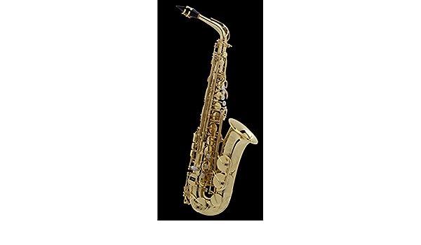 SE-A2L Saxo Alto Mi Bemol SA-80 II: Amazon.es: Instrumentos musicales