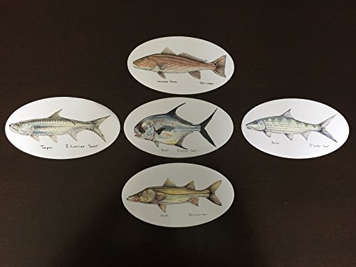 Permit, Tarpon, Bonefish, Snook, Redfish - Ultimate Saltwater Fish Decal Package - Jeff Currier Fish Stickers - Vinyl and Waterproof - Perfect Fishing Gift - Fly Fishing Stickers - 5 Different Fish