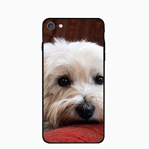 iPhone 6 Plus Case, Molly The Westie Printed