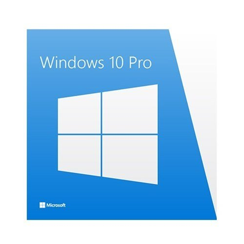 Windows 10 Professional product key