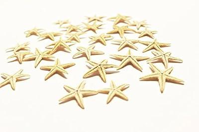 "FSG 100 Tiny Mini Starfish - Philippine Tan Flat Sea Stars (1/2"" - 1"" / 13-26 mm) Beach Crafts Wedding Invitations Nautical Home Decor"