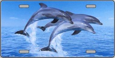 Smart Blonde Dolphins Novelty Metal License Plate LP-1186