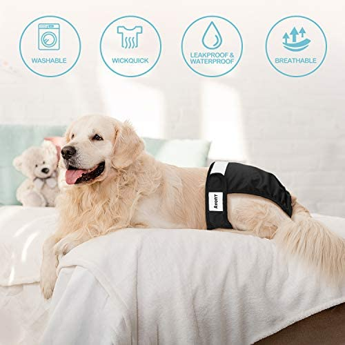 Machine Washable /& Eco-Friendly N\A 3 Pack Washable Female Pet Dog Diapers Reusable Highly Absorbent