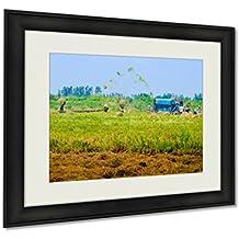 Ashley Framed Prints, Wheet Havest An Giang Long Xuyen Farmer Working Field Rice Breakers Machine, Wall Art Decor Giclee Photo Print In Black Wood Frame, Ready to hang, 20x25 Art, AG6091588