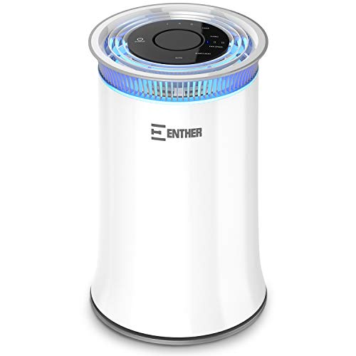 Enther Air Purifier with True HEPA Filter, Air Filter for Allergies Pets Smoke Smokers Home Mold Dust, Air Cleaner Odor Eliminator for Large Room with Air Quality Monitor, Optional Night Light