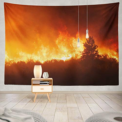 ASOCO Tapestry Wall Handing from Forest Fire Light Night Pine Forests and Brush Wild Fire Washington Wall Tapestry for Bedroom Living Room Tablecloth Dorm 80