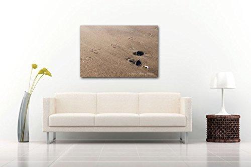 wrapped-canvas-seagull-footprints-sandy-beach-photographic-print-summer-seashore-decor-tan-brown-bla