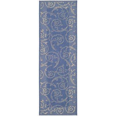 - Courtyard Blue/Natural Rug Rug Size: Runner 2'4