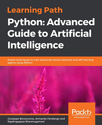 Learning Path - Python: Advanced Guide to Artificial Intelligence: Expert techniques to train advanced neural networks and self-learning agents using Python (English Edition)