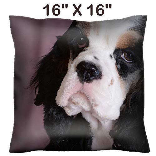 - Liili 16x16 Throw Pillow Cover - Decorative Euro Sham Pillow Case Polyester Satin Soft Handmade Pillowcase Couch Sofa Bed Image ID: 38608770 Cute Portrait of tri Color American Cocker Spaniel Puppy o
