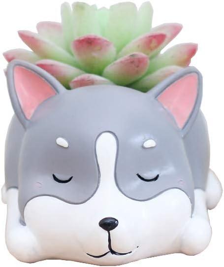 Youfui Cute Dog Flowerpot Resin Succulent Planter Desk Mini Ornament Husky