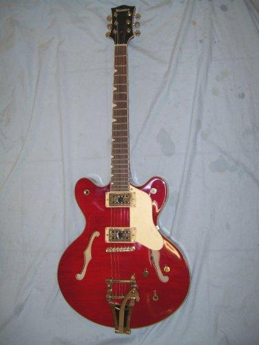 Semi Hollow body guitar with wharmy bar ()
