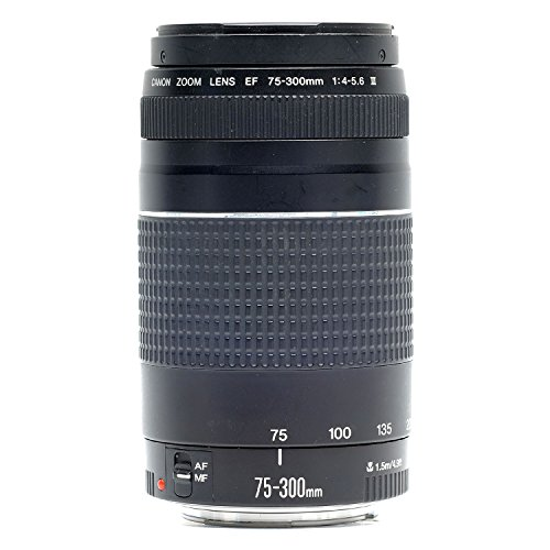 Canon 75 300mm Telephoto Certified Refurbished product image