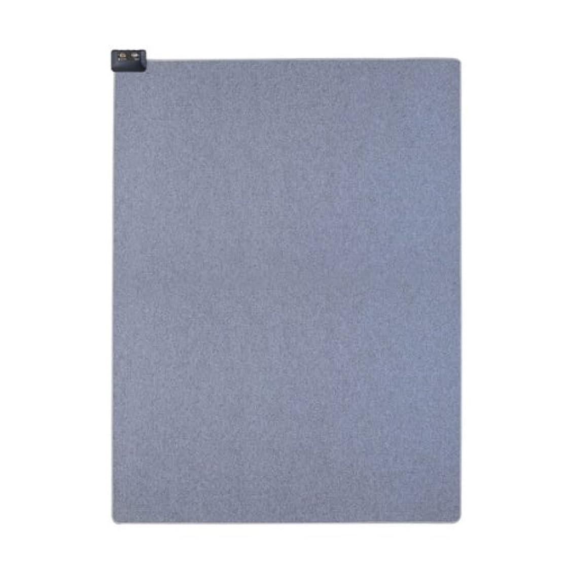 文房具チラチラするチューリップ広電(KODEN) やわらかい 電気カーペット 本体のみ 遠赤外線 1畳 (88×176cm) CWU1025