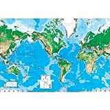 World Map Paper Wall Mural Picture