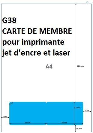 carte de membre vierge 100 ex CARTE DE MEMBRE PLASTIFIE pour IMPRIMANTE, carte intégrée