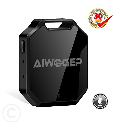AIWOGEP Spy Voice Recorder One-Key Operation Voice Activated Investigation Forensics(Black) by AIWOGEP