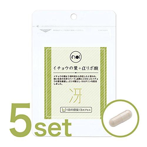 noi イチョウの葉 + αリポ酸 + l-カルニチン 5袋セット B07675YRV5