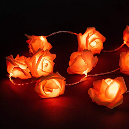 Avanti 20 Led Battery Operated String Romantic Flower Rose Fairy Light Lamp Outdoor for Valentines Day, Wedding, Room, Garden, Christmass, Patio, Festival Party Decor (Orange)