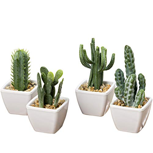WHW Whole House Worlds Realistic Faux Mini Cactus
