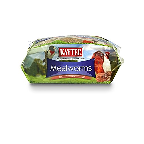 Kaytee Dried Mealworms for Chickens and Wild Birds by Kaytee (Image #2)