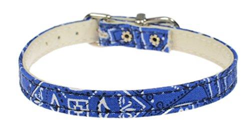 Buy evans collars 3/8 collar size 10 velvet blue