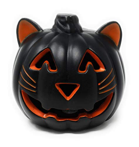 Holiday Home Halloween Black Cat Light Up Pumpkin