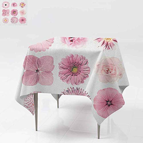 SONGDAYONE Durable Square Tablecloth Pink and White Botanical Daisy Chrystanthemum Cornflower Dahlia Iberis Primrose Gerbera Set dust-Proof Dried Rose W60 xL60 (Leaf Primrose Five Light)