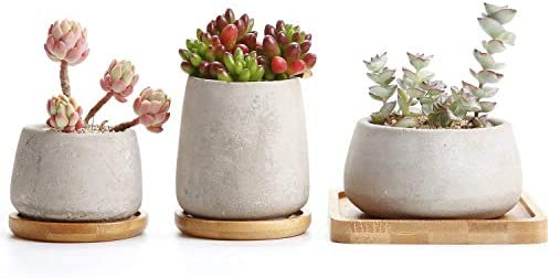 T4U 3 Inch – 4.25 Inch Cement Succulent Cactus Pot, Concrete Planter Pot Container Window Box, Small Clay Pot for Plants Flowers with Drainage Bamboo Tray for Home Decor, Set of 3 Grey