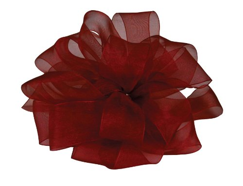 (Offray Berwick LLC 979105 Berwick Simply Sheer Asiana Ribbon -7/8