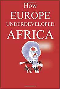 how europe under developed africa Welcome to africabiz online synopsis rss feed edition previous issue available atthis link click here to read a review about how europe underdeveloped africa.