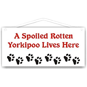 A Spoiled Rotten Yorkipoo Lives Here 1