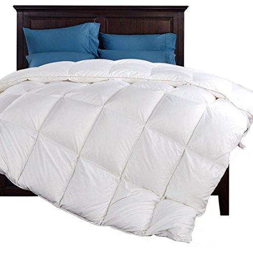 MRNIU Luxurious King Size Duvet Insert Goose Down Comforter Blanket Comforters Solid White 100% Cotton 65oz Anti-allergy White Cotton Blanket Goose Duvet Down Blanket Full Allergy (Puffy Inserts)