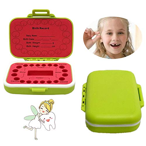 Baby Tooth Box Keepsake for Personalized Tooth Holder for Kids with English Mark Green
