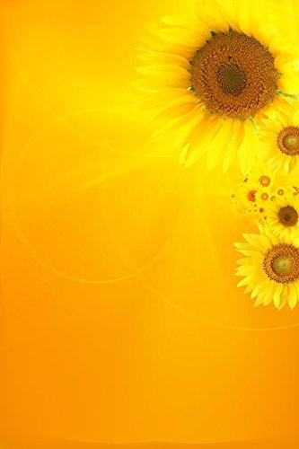 Home Comforts LAMINATED POSTER Floarea Soarelui 22 24x36 Pos
