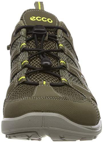 ECCO Men's Terracruise Hiking Shoe