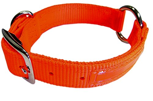Hamilton 1-Inch Double Thick Safe Rite Dog Collar with Center Ring, 22-Inch Length, Orange