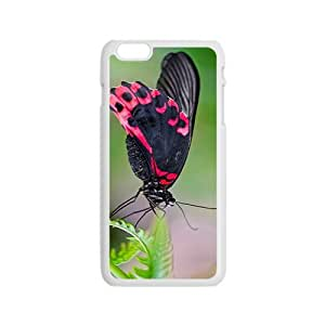 MMZ DIY PHONE CASEColorful Butterfly Hight Quality Plastic Case for Iphone 6